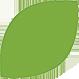 Green Castor leaf
